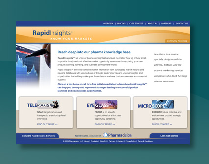 Rapid Insights Web Page